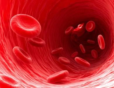 Programul pentru fluidizarea sângelui.